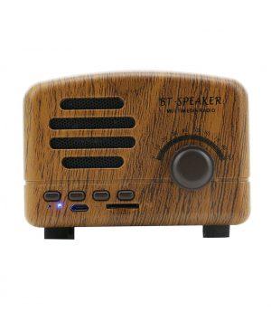 Loa FT-BT01 nghe nhạc Radio tivi điện thoại Bluetooth speaker