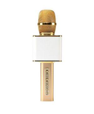 Micro Karaoke Không dây Bluetooth Loa Nhạc speakers PKCB-YS10 Cao Cấp