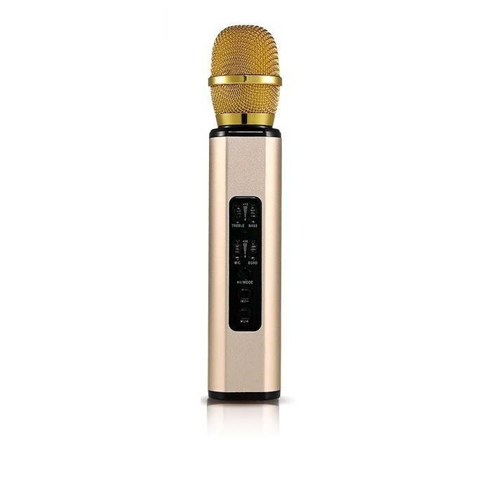 Micro Kèm loa Karaoke Bluetooth nhập khẩu cao cấp PKCB BM06 cắm thẻ nhớ