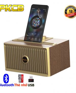 Loa Buetooth Oneder V06 siêu Bass âm thanh chuẩn Hifi Đen PF147